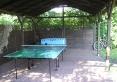 Tenis stolowy,pilkarzyki